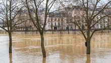 Paris, Bank Of The Seine Under...