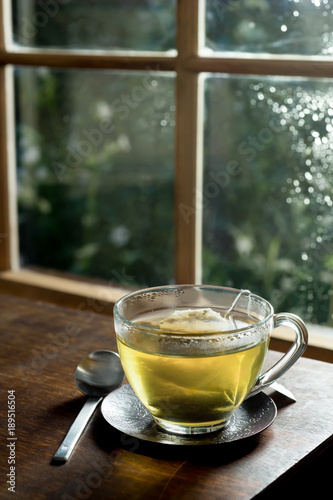 Tea A cup of green tea in front of a window with morning dew and lush green outdoors scenery