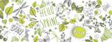 Fototapeta Młodzieżowe - Spring doodles background
