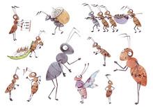 Set Of Cute Cartoon Ants. Isol...
