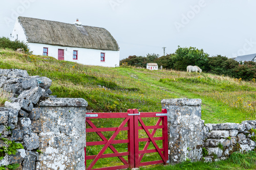 Photo Typical Irish cottage house with thatched roof and stone wall with red fence on The Aran Islands, a group of three islands located at the mouth of Galway Bay, on the west coast of Ireland