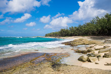 Turtle Bay Pacific Ocean Beach