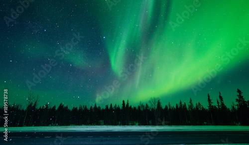 Foto auf Leinwand Nordlicht Northern lights ,Aurora borealis ,green, purple, blue, stars. North Pole, Iceland, Russia