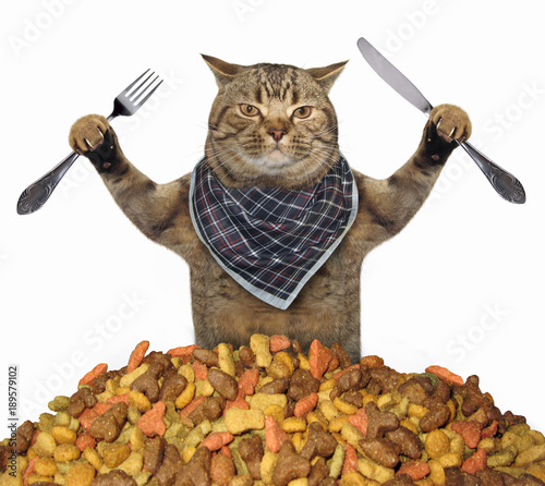 Keuken foto achterwand Kat The cat with a knife and a fork is near a pile of dry food. White background.