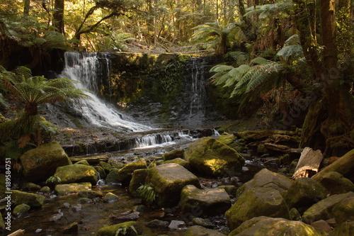 Foto op Aluminium Oranje Horseshoe Falls in Mount Field National Park on Tasmania