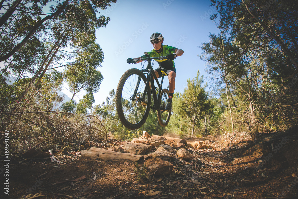 Fototapeta Wide angle view of a mountain biker speeding downhill on a mountain bike track in the woods