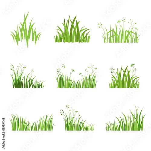 Eco green grass set