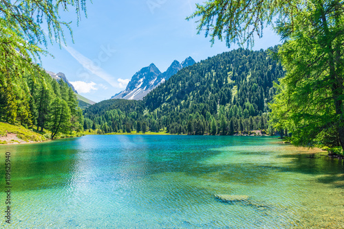 Canvas Prints Night blue Summer day. Alps in Switzerland. Grisons. Path across the lake. Forest landscape in summer. Walk in the canton of Grisons.