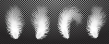 Falling Twirled Realistic Feathers Isolated On A Transparent Background. Easy Style, Can Be Used In Flyers, Banners, Web. Light Cute Feathers Design. Elements For Design. Vector Illustration. EPS 10.