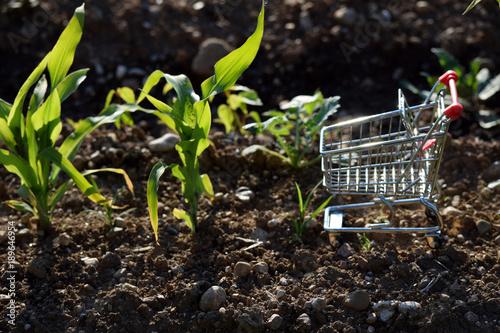 フードマイレージ Chilometro zero  Food miles 푸드 마일리지 フードマイレージ 푸드 마일리지 alimentos agricolt Canvas-taulu