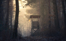 Sunset In Deep Foggy Winter Fo...