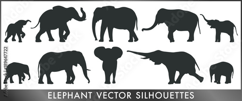 Elephant vector silhouettes Wallpaper Mural