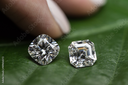 Valokuva  Diamonds on green leaf