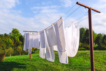 Linen Hanging On The Clothesli...