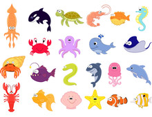 Big Vector Set Of Sea Creature...