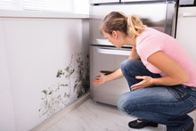 Shocked Woman Looking At Mold ...
