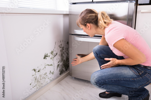 Photo Shocked Woman Looking At Mold On Wall