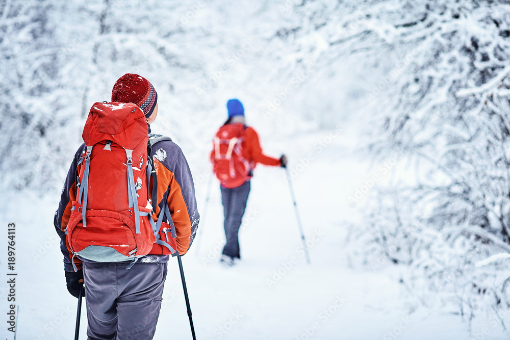 Fototapety, obrazy: Trekkers along the path to  refuge in the Natural Park