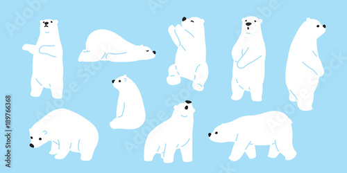 Fotografia, Obraz  Bear polar bear teddy vector icon character cartoon doodle illustration