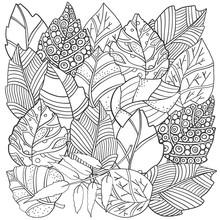 Floral Doodle Background Patte...