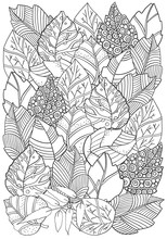 Floral Doodle Background Pattern In Vector With Autumn Leaves. Design Asian, Ethnic, Zentangle, Tribal Pattern. Black And White. Coloring Book. A4