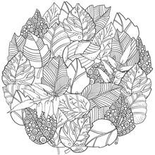Floral Doodle Circle Pattern I...