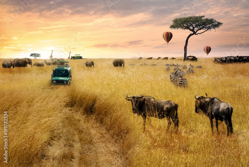 Deurstickers Afrika Dreamy African Wildlife Safari Scene