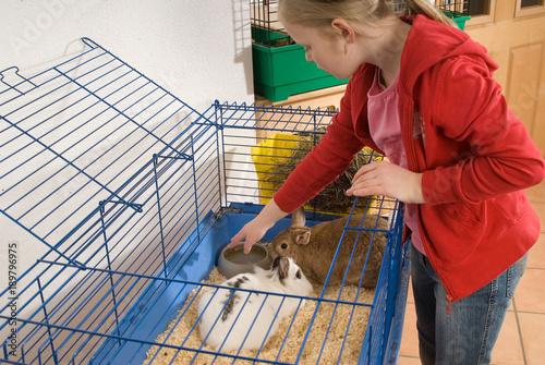 Mädchen versorgt ihre Kaninchen
