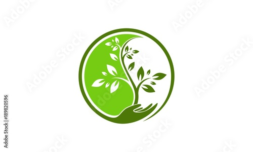 Tree yin yang logo vector Canvas-taulu