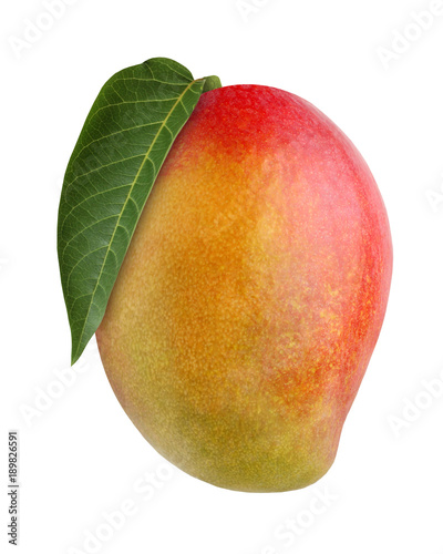 mango, isolated on white background.