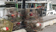 Crab Traps Stacked At The Docks