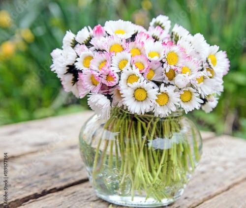 Foto op Aluminium Madeliefjes Alle Liebe, Glückwunsch, Danke: Strauß aus Gänseblümchen in kleiner Vase :)
