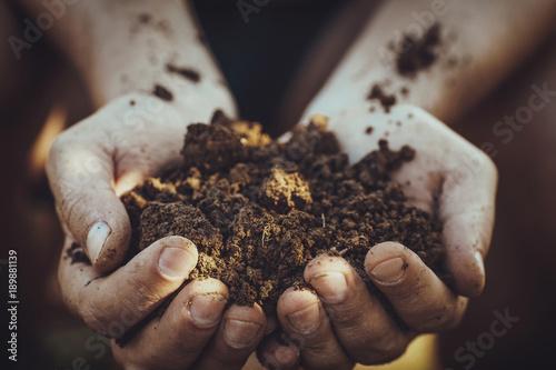 Gardening with farmer