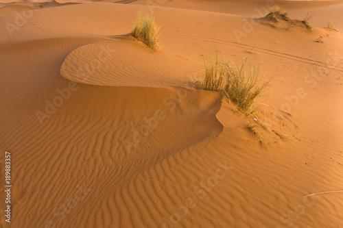 Foto op Canvas Baksteen Sand dunes in Erg Chebbi at sunrise, Sahara desert, Morocco, Africa