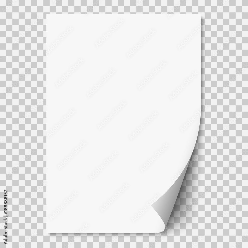 Fototapeta Vector white realistic paper page with curled corner.