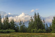 Clouds over top of a mountain with green pine forest and grass meadow