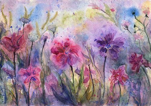 Fioletowe kwiaty i zioła. Streszczenie fioletowa łąka. Malowanie emocjonalne. Akwarela kompozycji