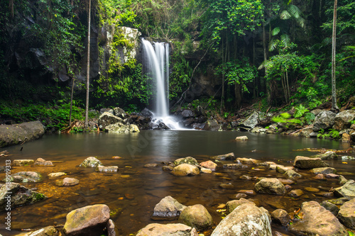 Vászonkép  Curtis Falls a popular waterfall in Tamborine National Park on Mount Tamborine i