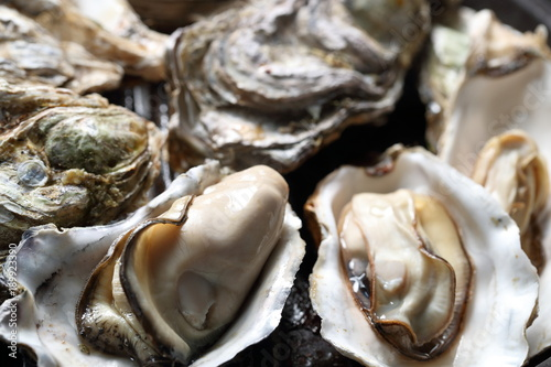 牡蠣の酒蒸し Oysters steamed with Japanese sake