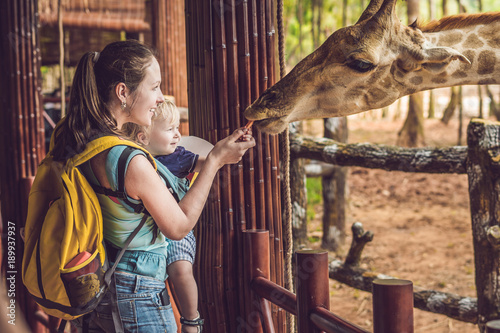 Photo  Happy mother and son watching and feeding giraffe in zoo