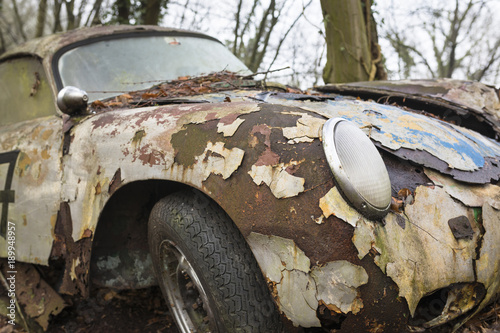 Fotografie, Obraz  Abandoned sports car decaying in a forest