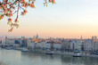 Pest side of Budapest city morning view with blooming tree branch