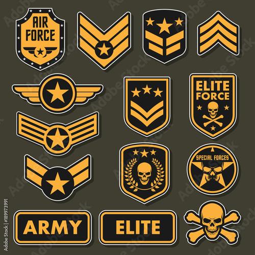 Military army badges Canvas Print