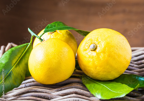 Fresh bergamot citrus fruits from Reggio Calabria Italy on rustic wood background.