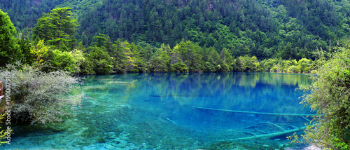 Canvas Prints Green coral view of colorful lake in jiuzhaigou national park, Sichuan, china