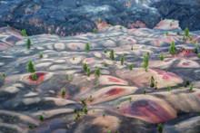 Painted Sand Dunes Lassen Volc...