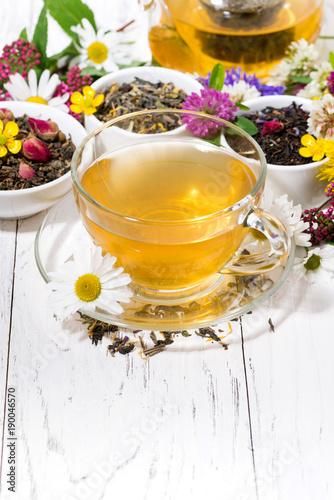 Fototapeta fragrant herbal tea in a cup on white background, vertical top view obraz