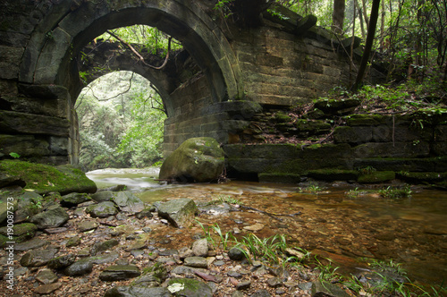 Printed kitchen splashbacks Forest river ruins of an ancient bridge in the forest