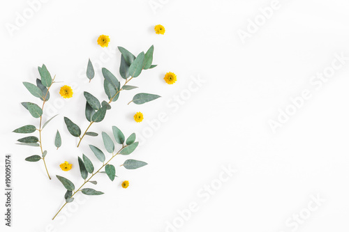 Flowers Composition Pattern Made Of Yellow Flowers And Eucalyptus