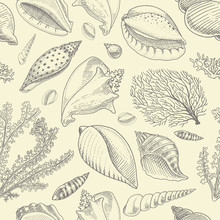 Seamless Pattern Shells, Seaweed And Mollusca Different Forms. Sea Creature. Engraved Hand Drawn In Old Sketch, Vintage Style. Nautical Or Marine, Monster Or Food. Animals In The Ocean.